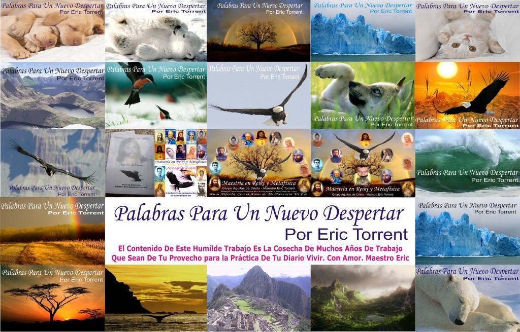 TARINGA TAPAS DE CUADERNILLO EVOLUTION 2010